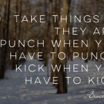 Wisdom Wednesday – Take Things As They Are