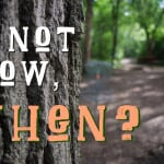 Wisdom Wednesday – If Not Now, When?