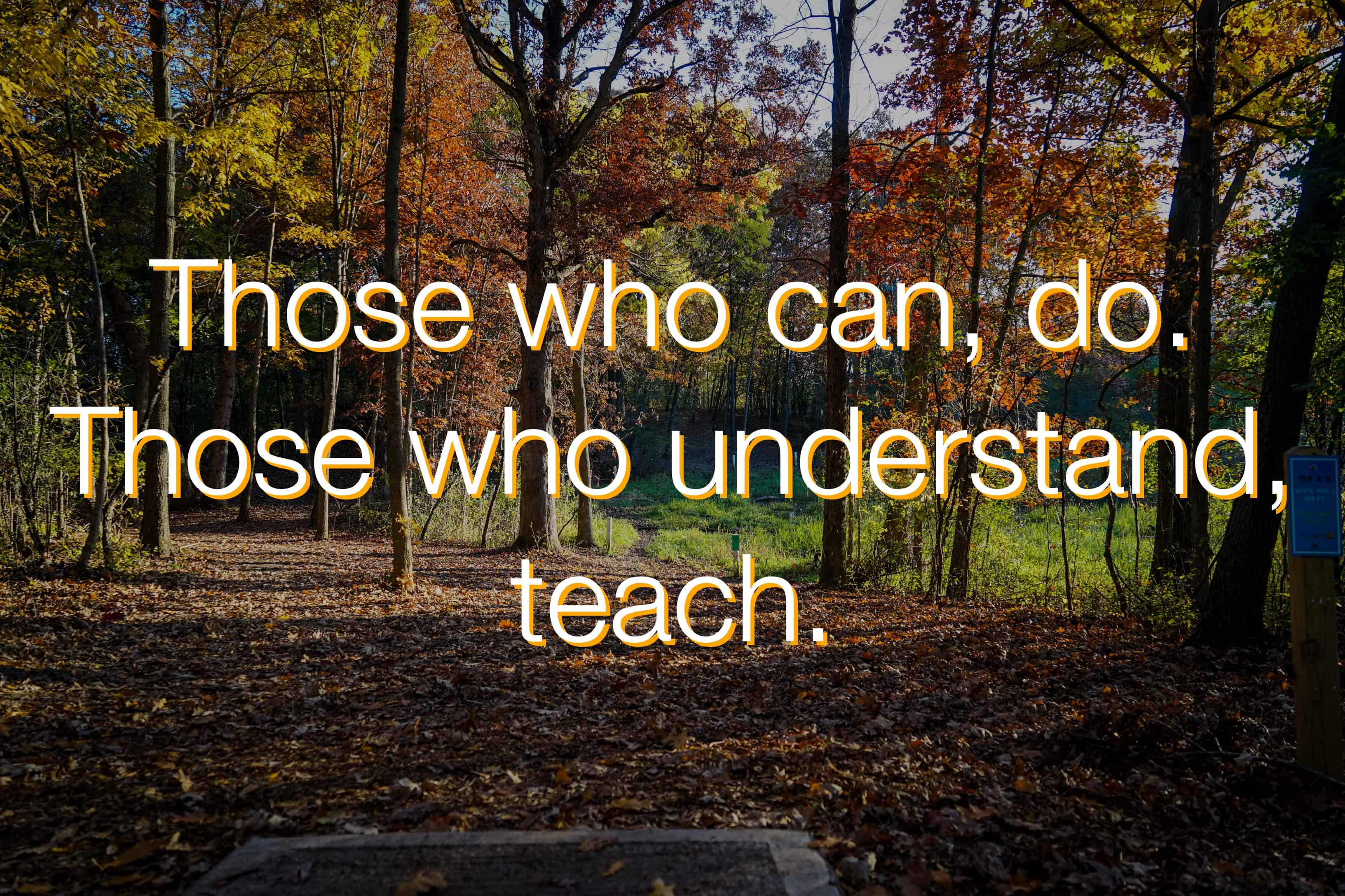 Those That Know Do Those That Understand Teach: Those Who Understand, Teach