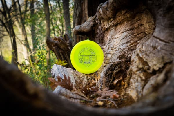 Westside Discs Sampo in the woods