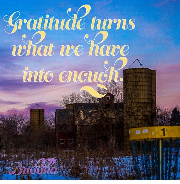 Gratitude disc golf meme