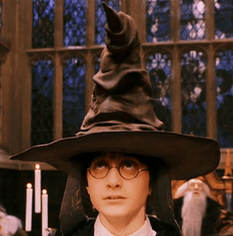 Harry Potter Sorting Hat helping to pick your disc golf disc